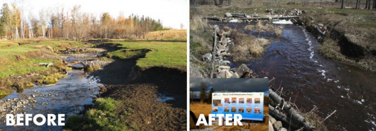 Murray Creek Restoration